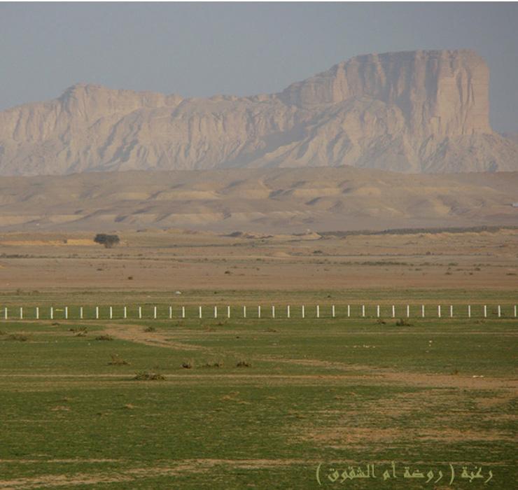 صورة لطبيعة بلدة رغبة - روضة أم الشقوق عام 1430هـ